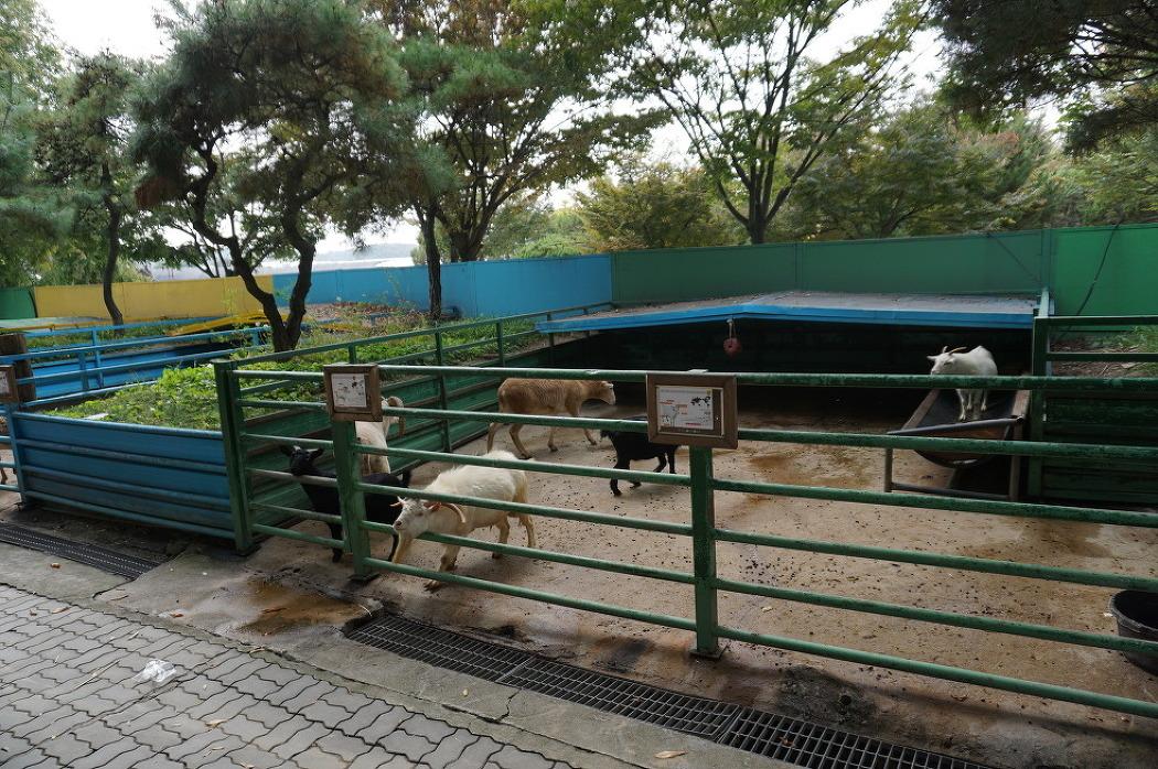 쥬쥬동물원