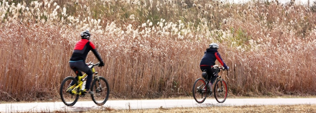 영산강 8경을 보며 달려보는 자전거 여행! 자전거길 안내센터