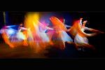 춤의 미학...