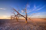 20091121 Salton Sea