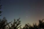 러브조이 혜성 (Comet Lovejoy, C/2014 Q2)