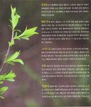 증산도 태을주 도공 수행 - 크론병, 위장병 치유의 은혜(9)