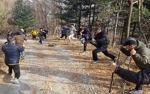 경북 영주에서 만나는 국립산림치유원과 소수서원과 소백산국립공원