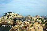 울산동구여행. 대왕암공원 산책로 시원한 바람이 최고