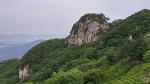 경기도 포천 주금산 ~ 쭉쭉 뻗은 나무와 마루의 아름다움 #185