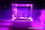 3D프린터로 LED바 장착 화분 제작하기.
