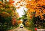 빨간 단풍의 나라, 캐나다 가을 색을 담아보다