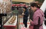 10월 전라도축제로 진안 홍삼 축제와 순창 장류 축제가 펼쳐진다