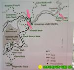 뉴질랜드 길 위의 생활기 861-Aniwaniwa Falls,아니와니아 폭포 아래에서 하는 낚시