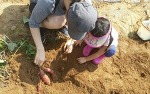 퇴촌 토마토평화마을과 함께 경기광주한옥마을과 곤지암리조트와 화담숲 탐방