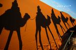 붉은 낙타 벽화