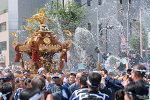 후카가와 하치만 축제 (深川八幡祭り)