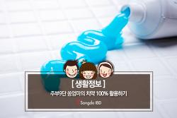 [생활정보] 주부9단 쏭엄마의 치약 100% 활용하기