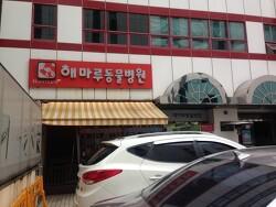 [동물병원]분당 해마루 이차진료 동물병원을 다녀오다(심장병/췌장염)