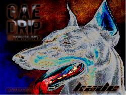 [990VOLT Records] KADE - Gae Drip (Preview Ver.)