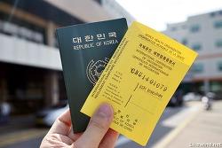여행 출발 10일 전, 황열병 예방접종 하기(대전 충남대학교병원)