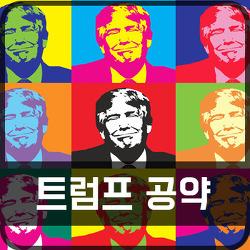 트럼프 공약, 미국 대선 개표 결과