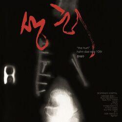 한대수 [상처] 어쿠스틱 재즈로 표현한 위로와 치유의 음악