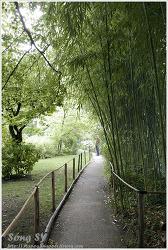 모네의 정원(지베르니 마을)