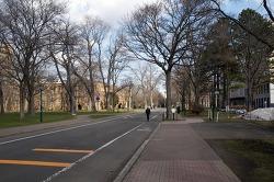 홋카이도(북해도) 여행 이야기 (16) 국립 홋카이도 대학교 -2
