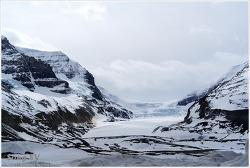 밴프, 아이스필드 파크웨이 (Icefield parkway)