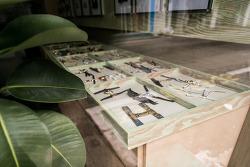 성수동 수제화 타운 사진(6)