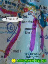 뉴질랜드 길 위의 생활기 838-Lake Aniwhenua 아니웨누아 호수의 무료 캠핑장