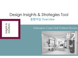 Design Insights &Strategies Tool #2-1