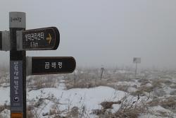 곰배령에서 만난 겨울왕국, 눈꽃 트래킹