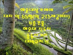 부산상가매매 해운대상가매매 월430만 신도시대로변
