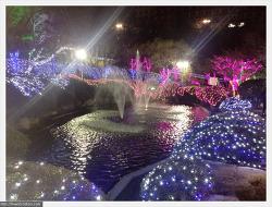 불빛 축제(in 동의대 혜안지)