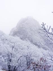 함양 남덕유산(1,507m)_20091115