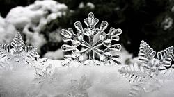 화이트크리스마스 이미지자료 모음