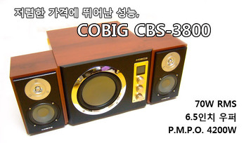 COBIG CBS-3800, 저렴한 가격에 뛰어난 성능의 2.1채널 스피커