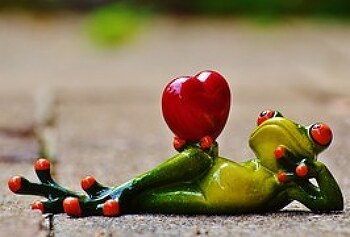 [영어공부혼자하기] 사랑에 관련된 영어표현, 영어숙어 공부하기