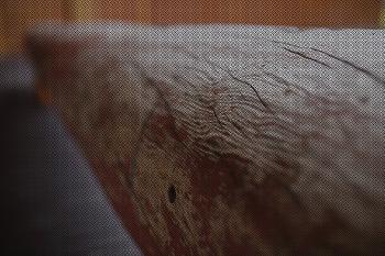 [포토샵] 사진에 패턴 넣기 만들기