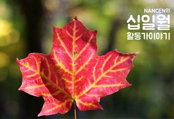 11월 활동가 이야기