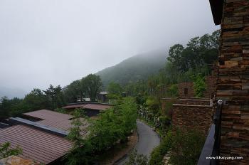 [충북제천여행]여름의 리솜포레스트(28평), 해브나인힐링스파 그리고 분양정보