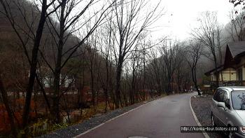[금산여행-금산산림문화타운]사계절이 모두 좋은 남이자연휴양림