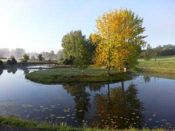 스마트폰으로 담아본 가을 아침 풍경