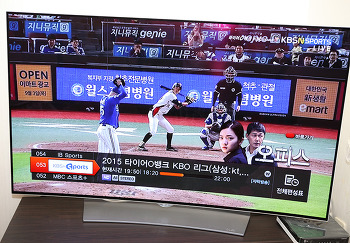 LG 곡면 OLED TV 55인치로 더 리얼하게 즐기는 스포츠경기