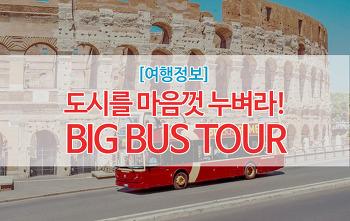 [빅버스]여행지에서 나의 신발이 되어줄 BIG BUS TOUR! #빅버스투어 #이층버스투어 #시티버스투어 #빅버스 #뉴욕빅버스 #홍콩빅버스 #파리빅버스 #도시버스투어