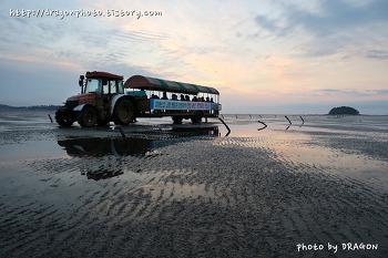 전국 최고의 명품 갯벌을 지키는 '람사르고창갯벌센터'