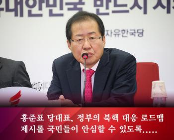 홍준표 당대표, 정부의 북핵 대응 로드맵 제시 바란다