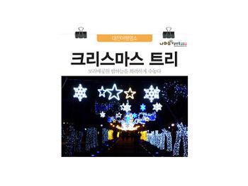 대전보라매공원 보라매 크리스마스트리! 밤하늘 수놓은 빛터널
