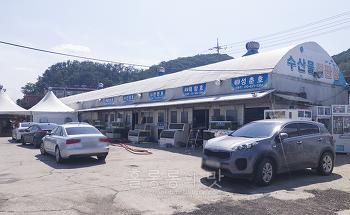 김포 전류리포구 숭어회와 대하구이, 새우튀김의 맛