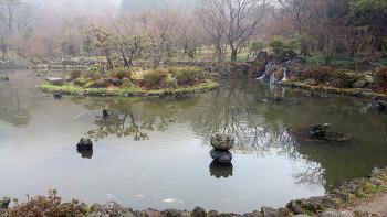 제주 절물자연휴양림 연못이 있는 풍경