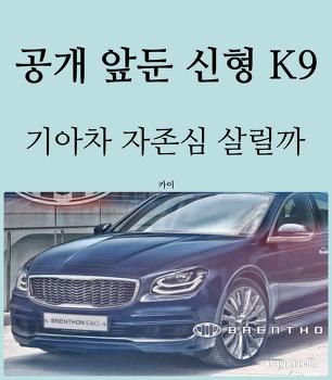 공개 앞둔 신형 K9, 기아차 자존심 살려줄까?