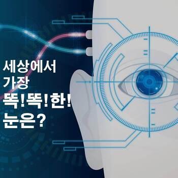 영상으로 다시보는 DT News -제1편 Vision AI