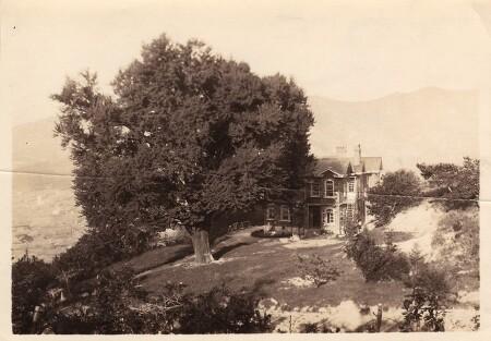 딜쿠샤와 은행나무